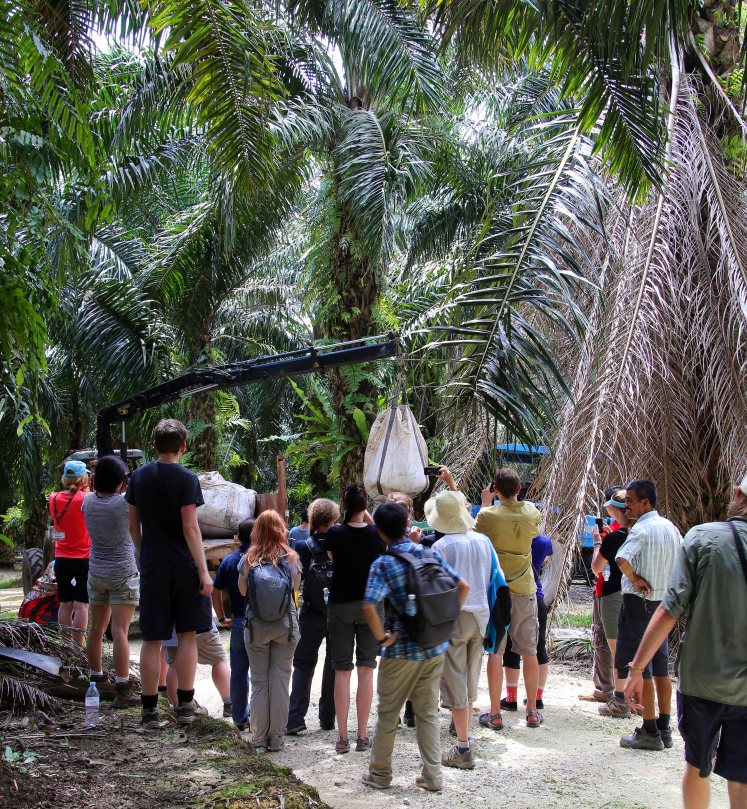 A visit to an oil palm plantation in Sarawak was an eye opening experience. Students started to try and think about solutions to the issues of workforce, and an inability to service the current plantations.